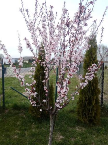 W poszukiwaniu wiosennych oznak